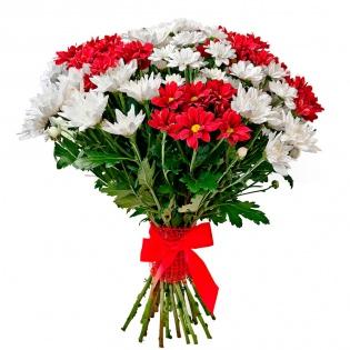 Хризантема кустовая (за шт)