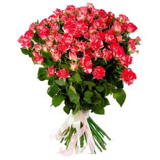 Розы Кустовые красно-белые